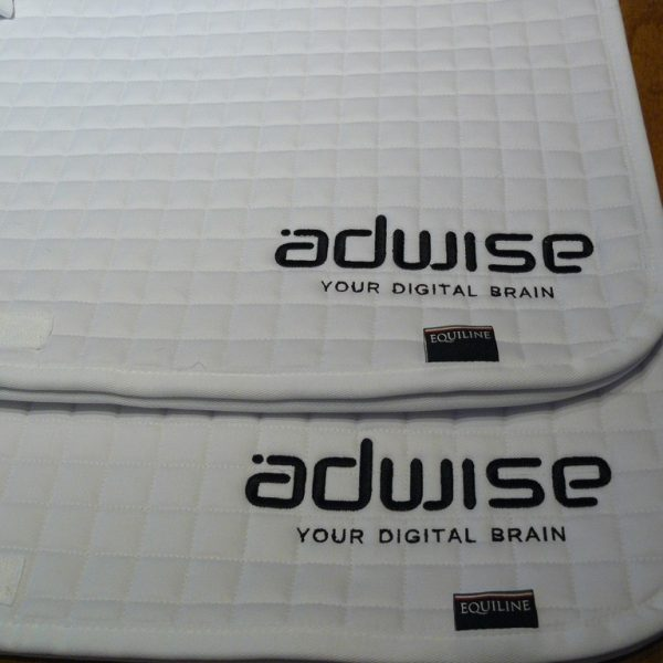 Adwise-1024x768